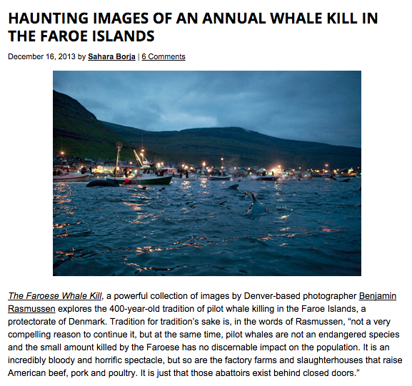 For Feature Shoot, Benjamin Rasmussen: http://www.featureshoot.com/2013/12/haunting-images-of-an-annual-whale-kill-in-the-faroe-islands/